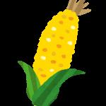 トウモロコシやライ麦、小麦などを原料とするグレーンウイスキー
