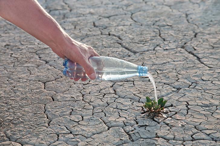 ひび割れた地面に水