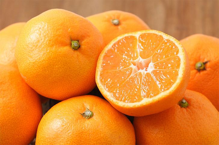 たくさんのみかん、柑橘類