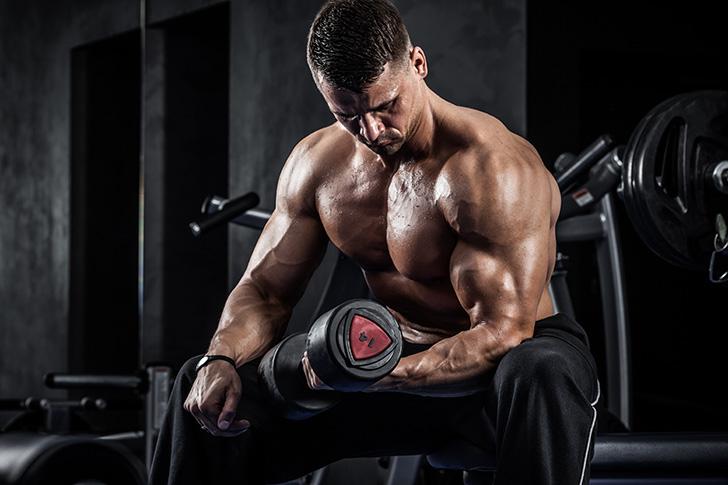 筋肉とアルコールの関係