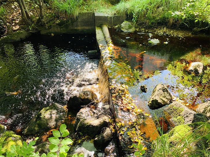 グレングラント川の水「ブラックバーン」