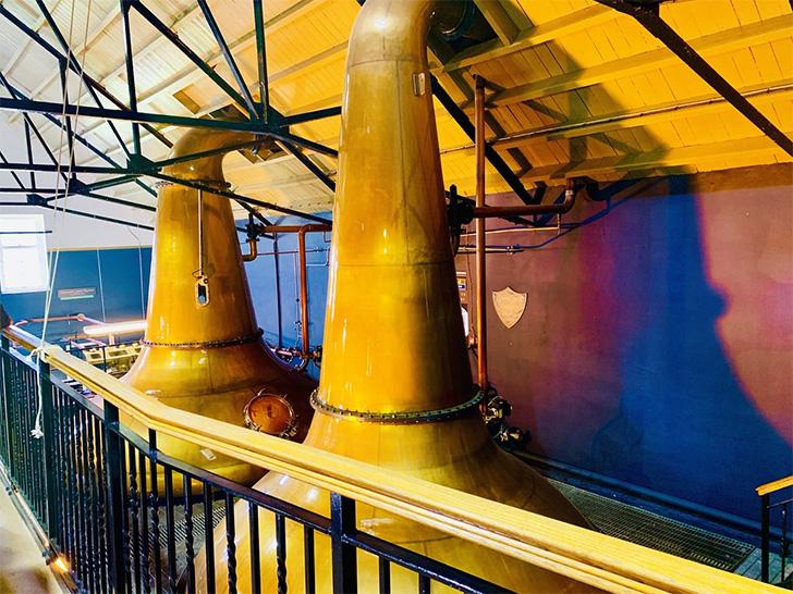 ダルウィニー蒸溜所のポットスチル